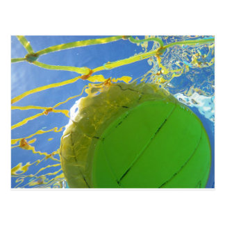 Water Polo Postcard