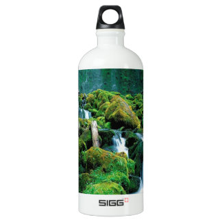 Water Proxy Falls Cascade Range Oregon SIGG Traveler 1.0L Water Bottle
