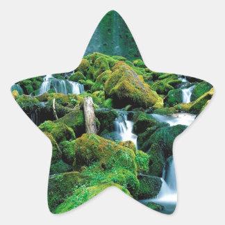 Water Proxy Falls Cascade Range Oregon Star Stickers