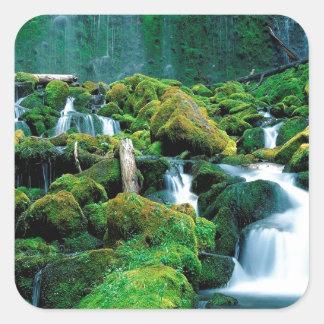 Water Proxy Falls Cascade Range Oregon Square Stickers