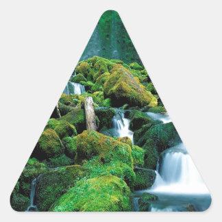 Water Proxy Falls Cascade Range Oregon Triangle Sticker