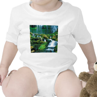 Water Proxy Falls Cascade Range Oregon Shirts