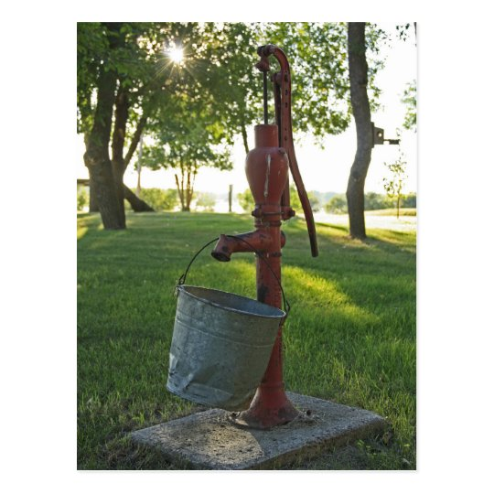 Water Pump and Pail Postcard