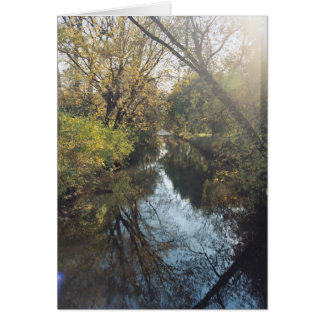 Water Reflecting Trees Greeting Cards