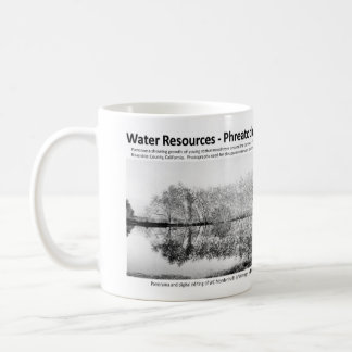 Water Resources I - Phreatophytes on the Landscape Coffee Mug