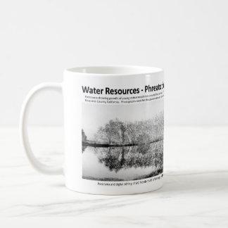 Water Resources I - Phreatophytes on the Landscape Coffee Mug