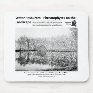 Water Resources I - Phreatophytes on the Landscape Mouse Pad