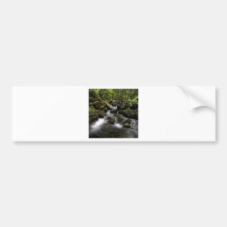 Water River Moss Woodland Car Bumper Sticker