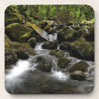 Water River Moss Woodland Drink Coasters