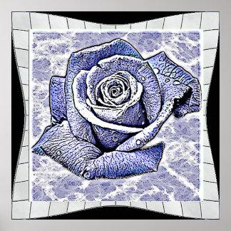 Water rose poster print