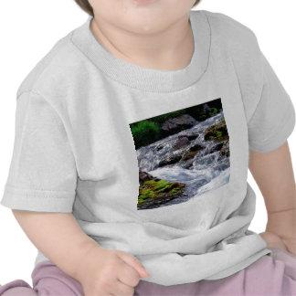 Water Rushing Georgia Island Shirt