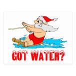 Water Ski Santa Post Card