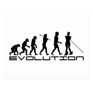 Water Ski Waterski Sport Evolution Art Postcard