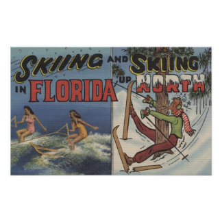 Water Skiing in Florida vs. Snow Skiing up North Poster