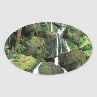 Water Smoky Mountains Tennessee Stream Oval Sticker