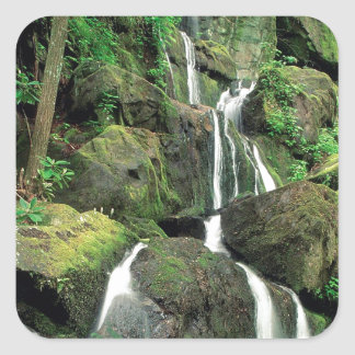 Water Smoky Mountains Tennessee Stream Square Sticker