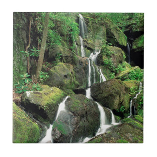 Water Smoky Mountains Tennessee Stream Tile