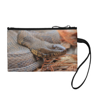 Water Snake Coin Purse