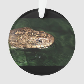 water snake ornament