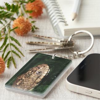 water snake Single-Sided rectangular acrylic keychain