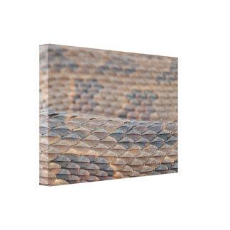 Water Snake Skin Gallery Wrap Canvas