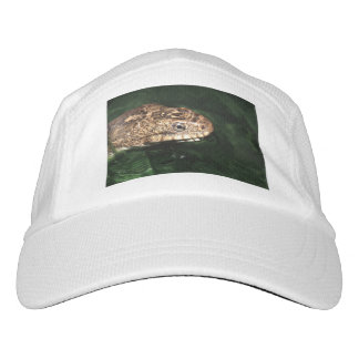 Water snake with reflection hat