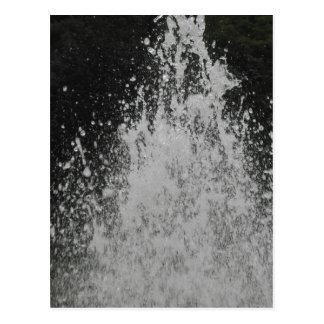 Water Spurting Postcard