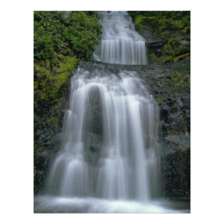 "Water Steps 8.5"" X 11"" Flyer"
