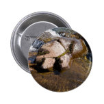Water Stone Pin