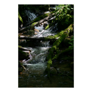 Water Stream Poster