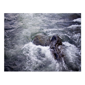 Water Themed, Rocks Break The Surface As Fast-Movi Postcard