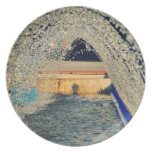 Water tunnel party plates