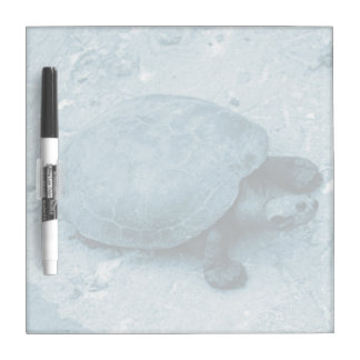 water turtle on bank blue tint reptile Dry-Erase board