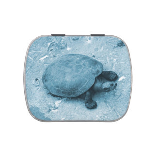 water turtle on bank blue tint reptile jelly belly candy tin