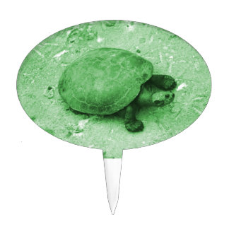 water turtle on bank green reptile cake topper