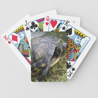 Water Turtle Bicycle Playing Cards