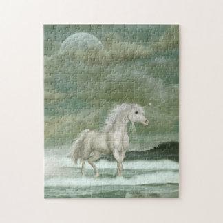 Water Unicorn Puzzle