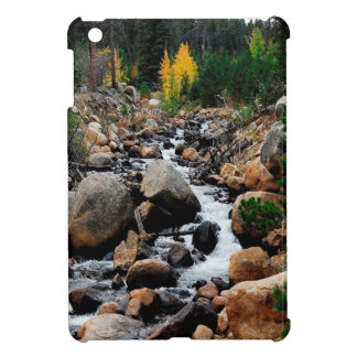 Water Valley Of Boulders iPad Mini Case