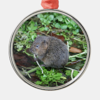 Water Vole Metal Ornament