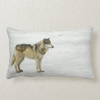 """""""Water, Water, Everywhere"""" Pillow"""