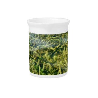 Water weeds under water background beverage pitcher