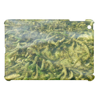 Water weeds under water background iPad mini cases