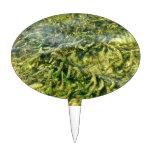 Water weeds under water background oval cake pick