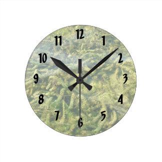 Water weeds under water background round clock