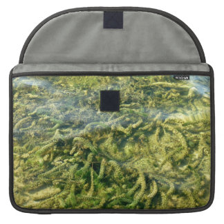 Water weeds under water background sleeves for MacBook pro