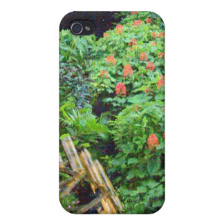 Water Wheel in the Tropics Case For iPhone 4