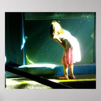 Water Window Poster