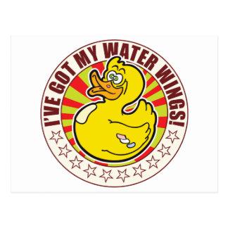 Water Wings Duck Postcard