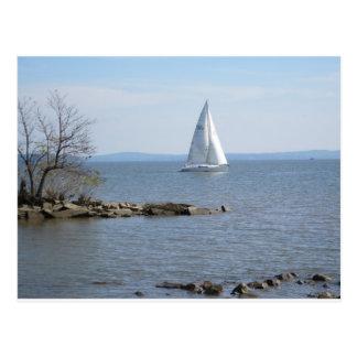 Water Wonderful Water Postcard
