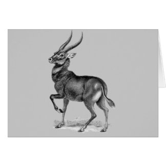 Waterbuck Card